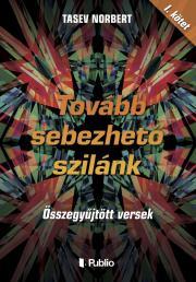 Tasev Norbert - Tovább sebezhető szilánk E-KÖNYV