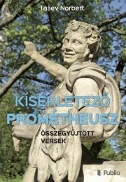 Tasev Norbert - Kísérletező Prométheusz E-KÖNYV