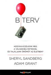 Grant Sandberg - B-terv E-KÖNYV