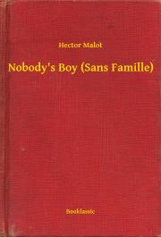 Nobody's Boy (Sans Famille) E-KÖNYV
