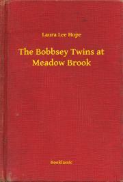 Hope Laura Lee - The Bobbsey Twins at Meadow Brook E-KÖNYV