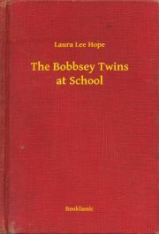 The Bobbsey Twins at School E-KÖNYV