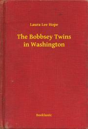 Hope Laura Lee - The Bobbsey Twins in Washington E-KÖNYV