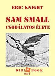 Sam Small csodálatos élete E-KÖNYV