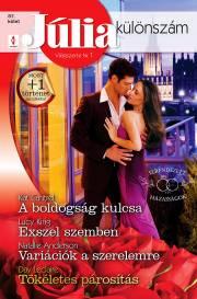 Júlia különszám 87. kötet - A boldogság kulcsa (Elrendezett házasságok 2.), Exszel szemben, Variációk a szerelemre, Tökéletes párosítás E-KÖNYV