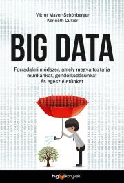 Viktor Mayer-Schönberger - Big Data E-KÖNYV